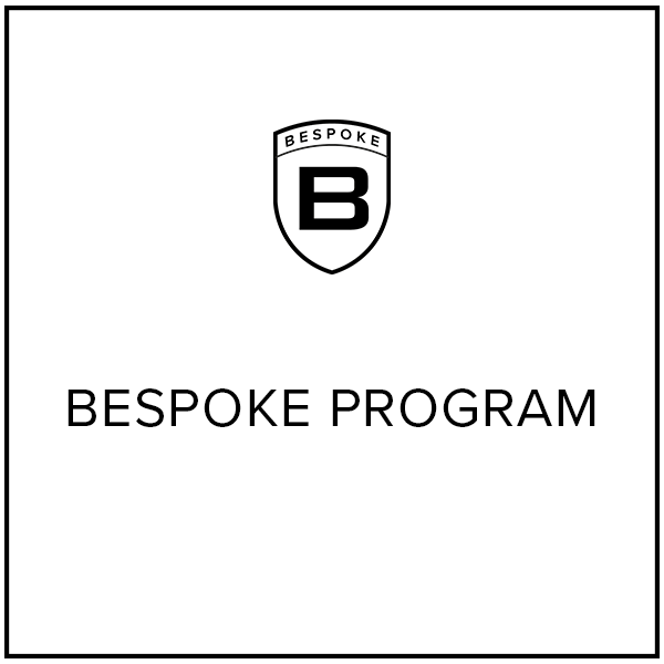 "Website Graphics Button ""Bespoke Program"""